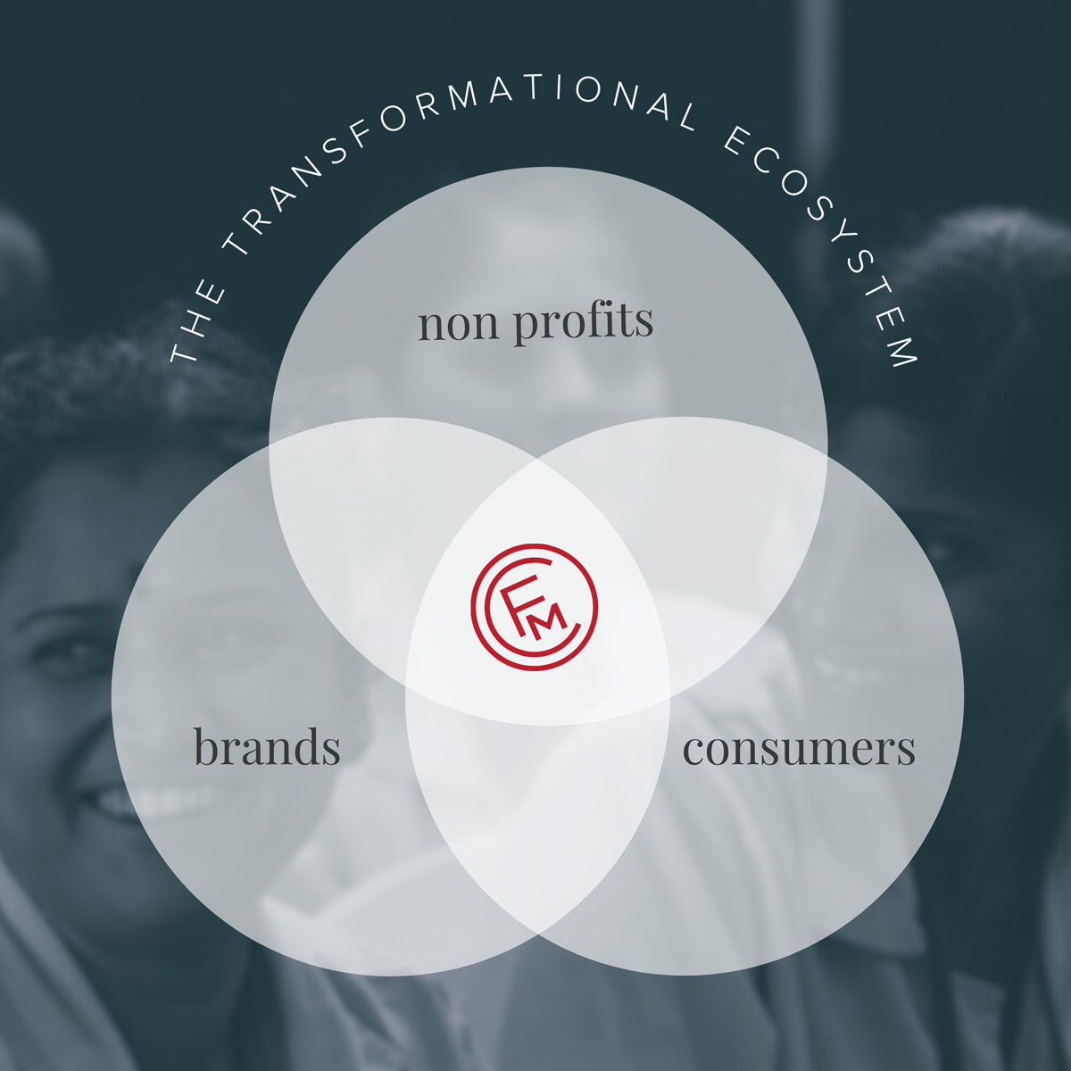 The transformational ecosystem.