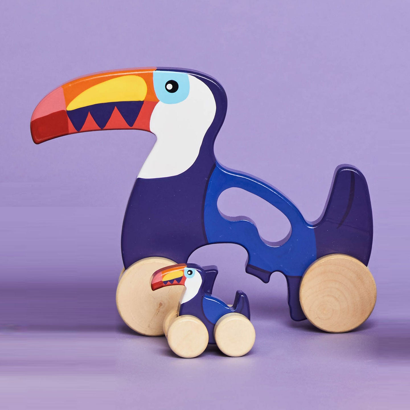 Push Pull Toy Toucan