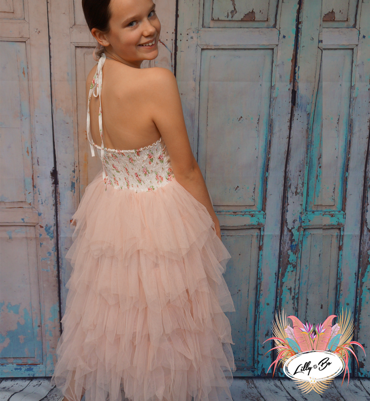 Josephina ~ Luxurious Tulle Party Dress