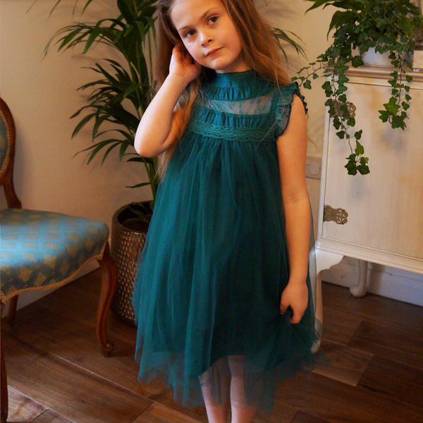 Neve ~ Party Dress or Flower Girl