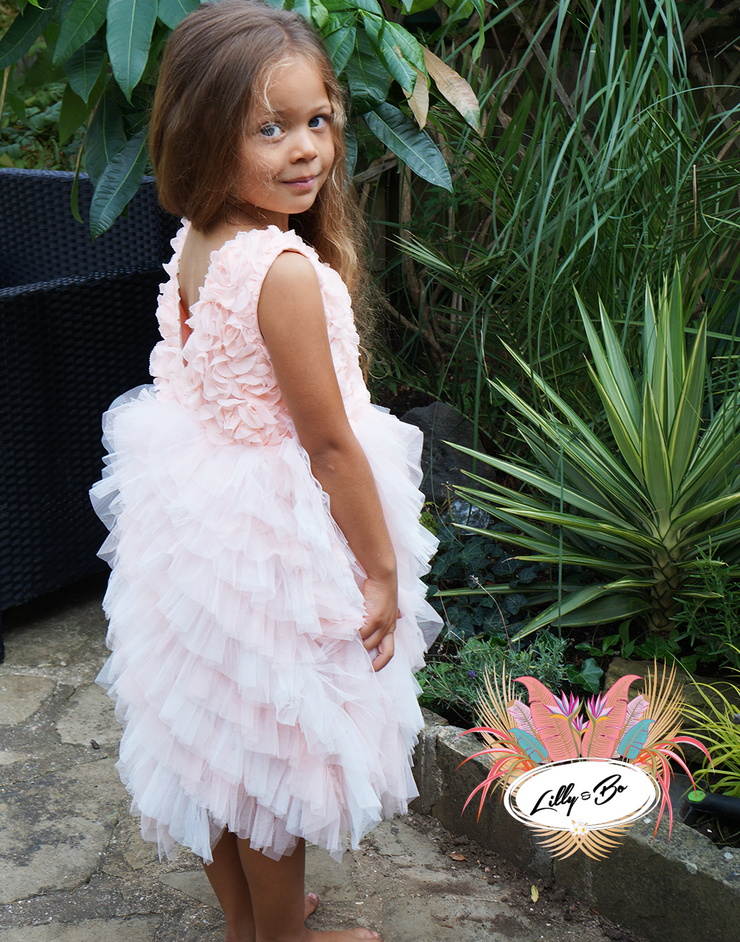 Posie ~ Party or Flower Girl Dress