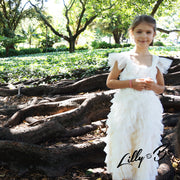 Storm in cream ~ Party or Flower Girl Dress