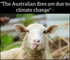 8 Australian Fire Facts Being Hidden by American Media