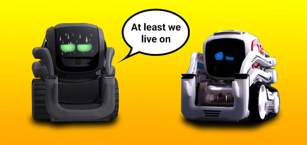 Anki Closes But Cozmo and Vector Live On