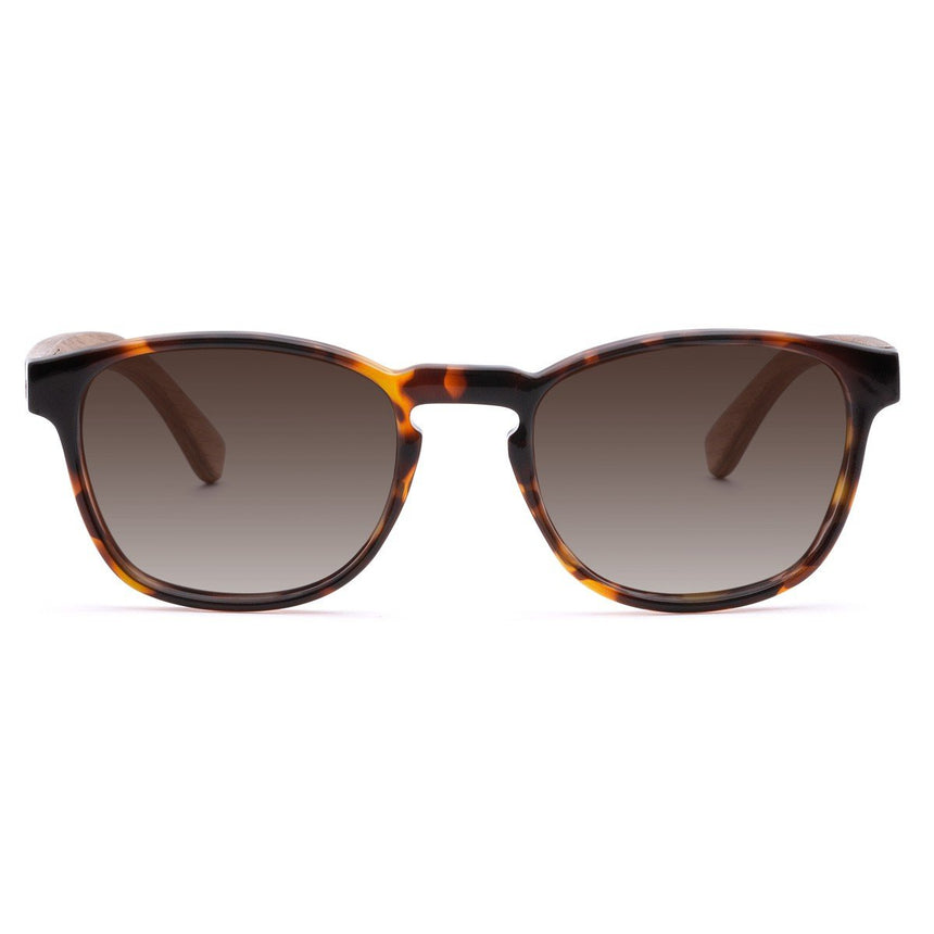 Acetate & Wood Sunglasses | Woodz Olli Tortoise