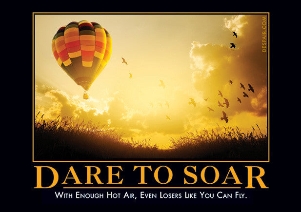 dare to soar despair inc