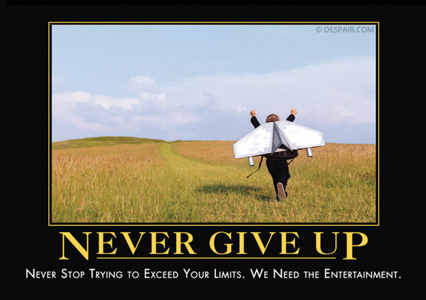 never give up MOTIVATIONAL POSTER 24X36 wisdom ENDURANCE perseverance