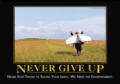 never give up despair inc