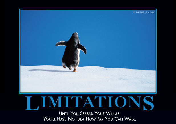 Image result for demotivational poster limitations