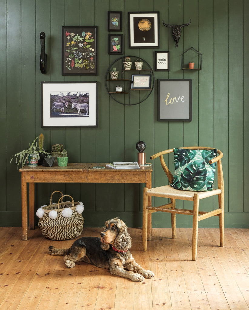Albert & Moo - Dress your walls, treat your plants & accessorize your home.