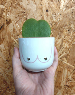 Boobies Mini Plant Pot