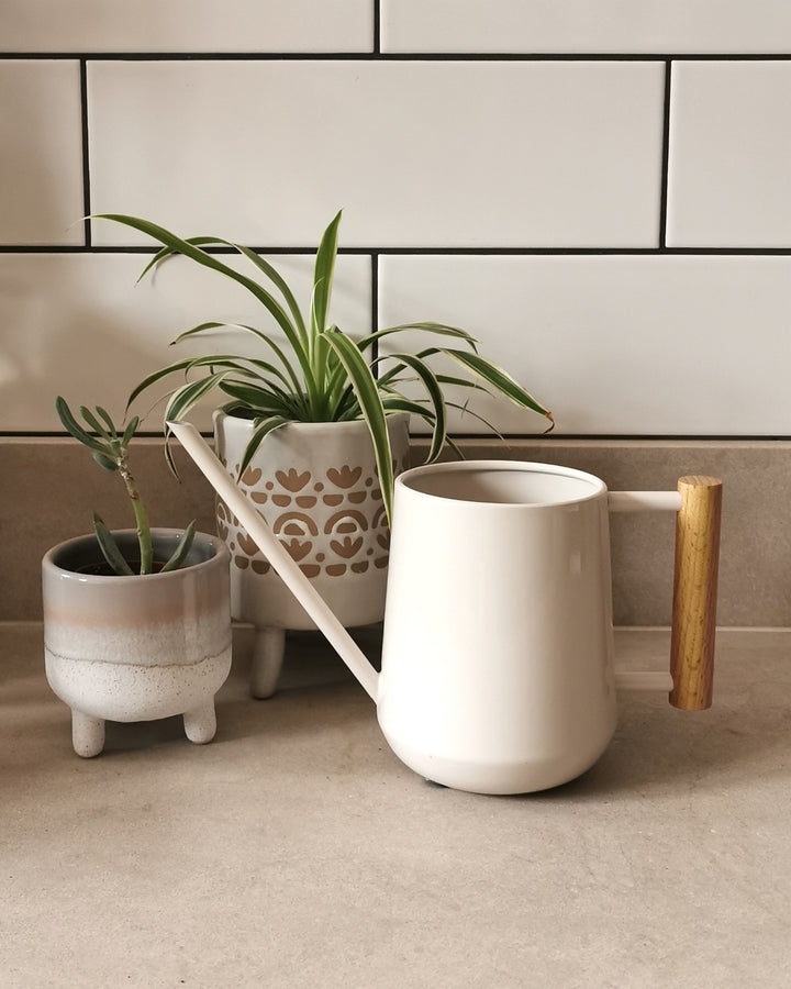 Stone Indoor Watering Can by Burgon & Ball at Albert & Moo