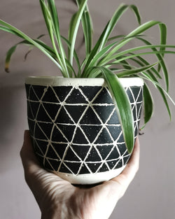 Scandi Boho Concrete Plant Pot at Albert & Moo