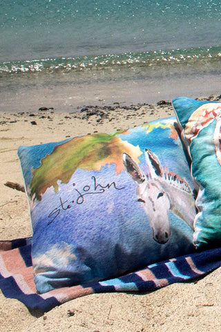 Donkey Map Pillow Cover