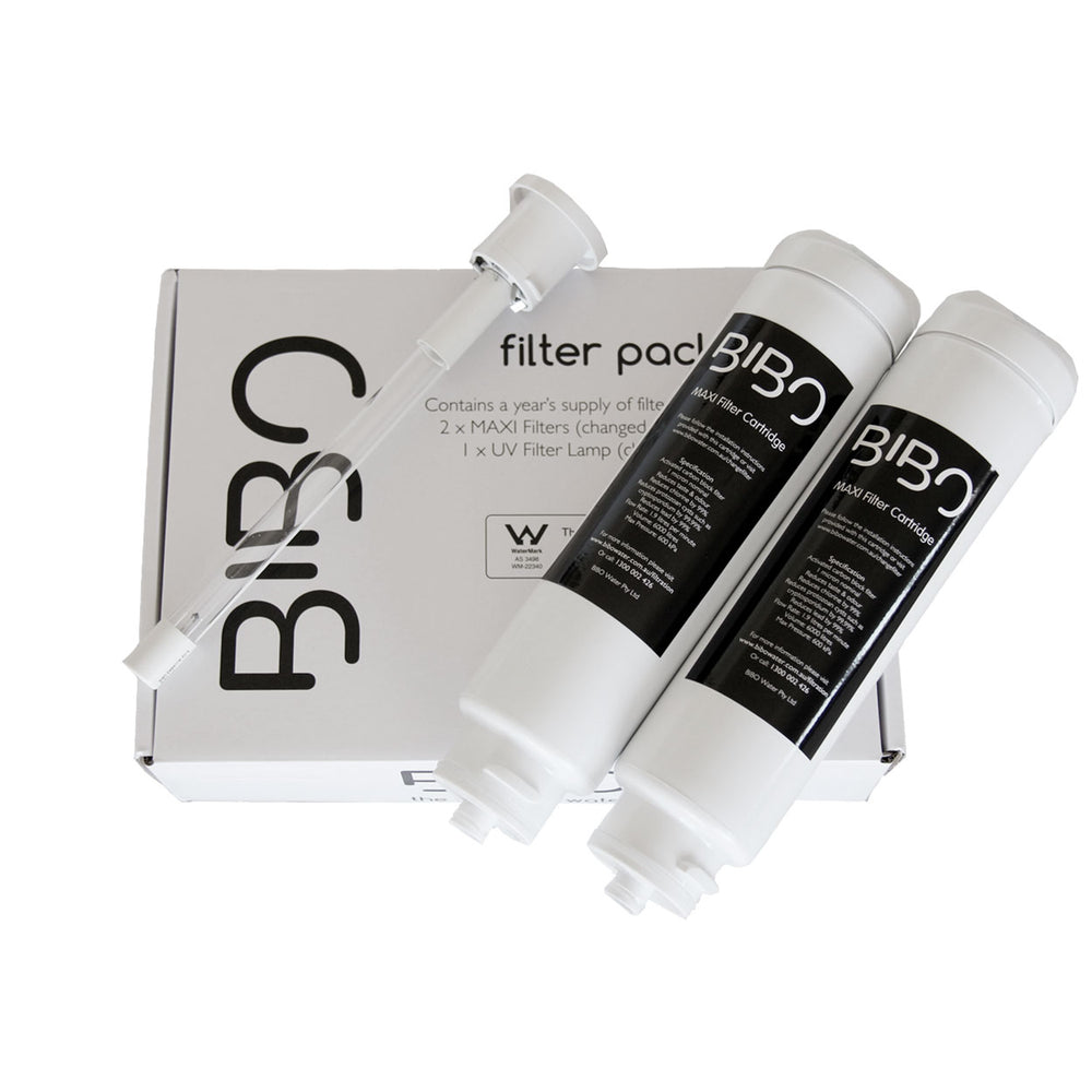 BIBO replacement filter pack