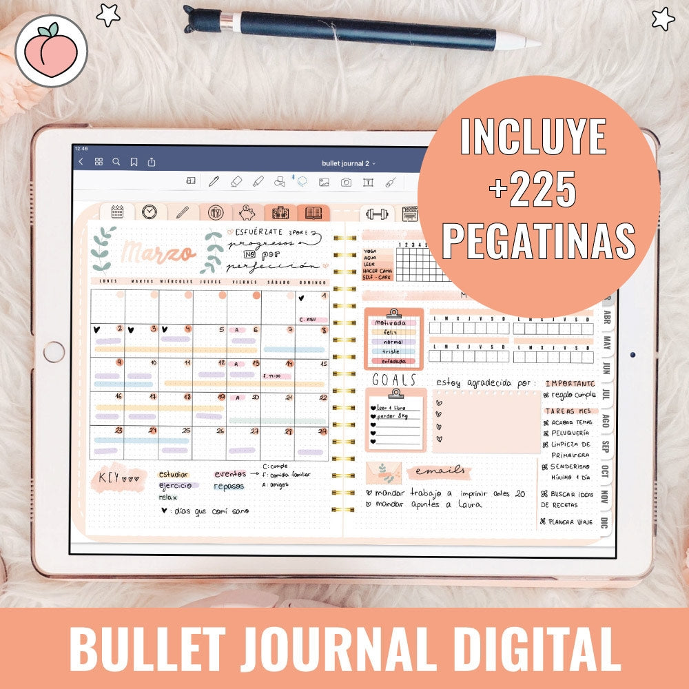 BULLET JOURNAL PEACH