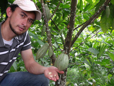 Where does cacao come from? (Videos)