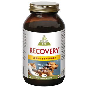Recovery Extra Strength Chewable 120PK