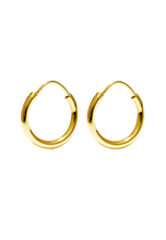 Load image into Gallery viewer, Hoop Earrings Small Gold shiny