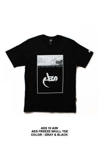 AES Freeze Skull Tee