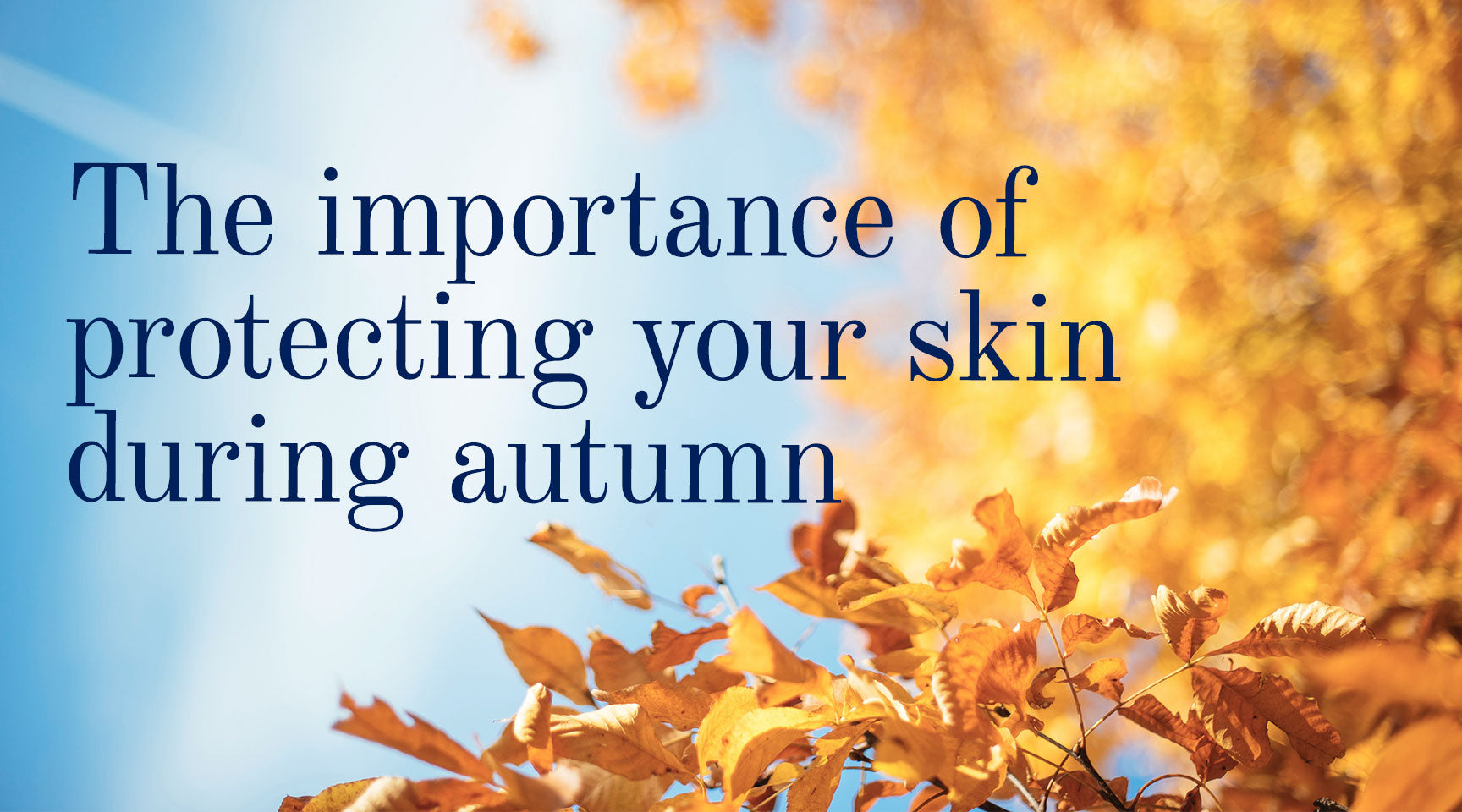 Solbari Blog: The importance of protecting your skin during autumn