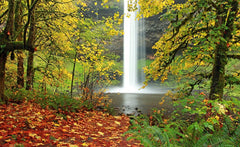 Silver Falls State Park Oregon in fall