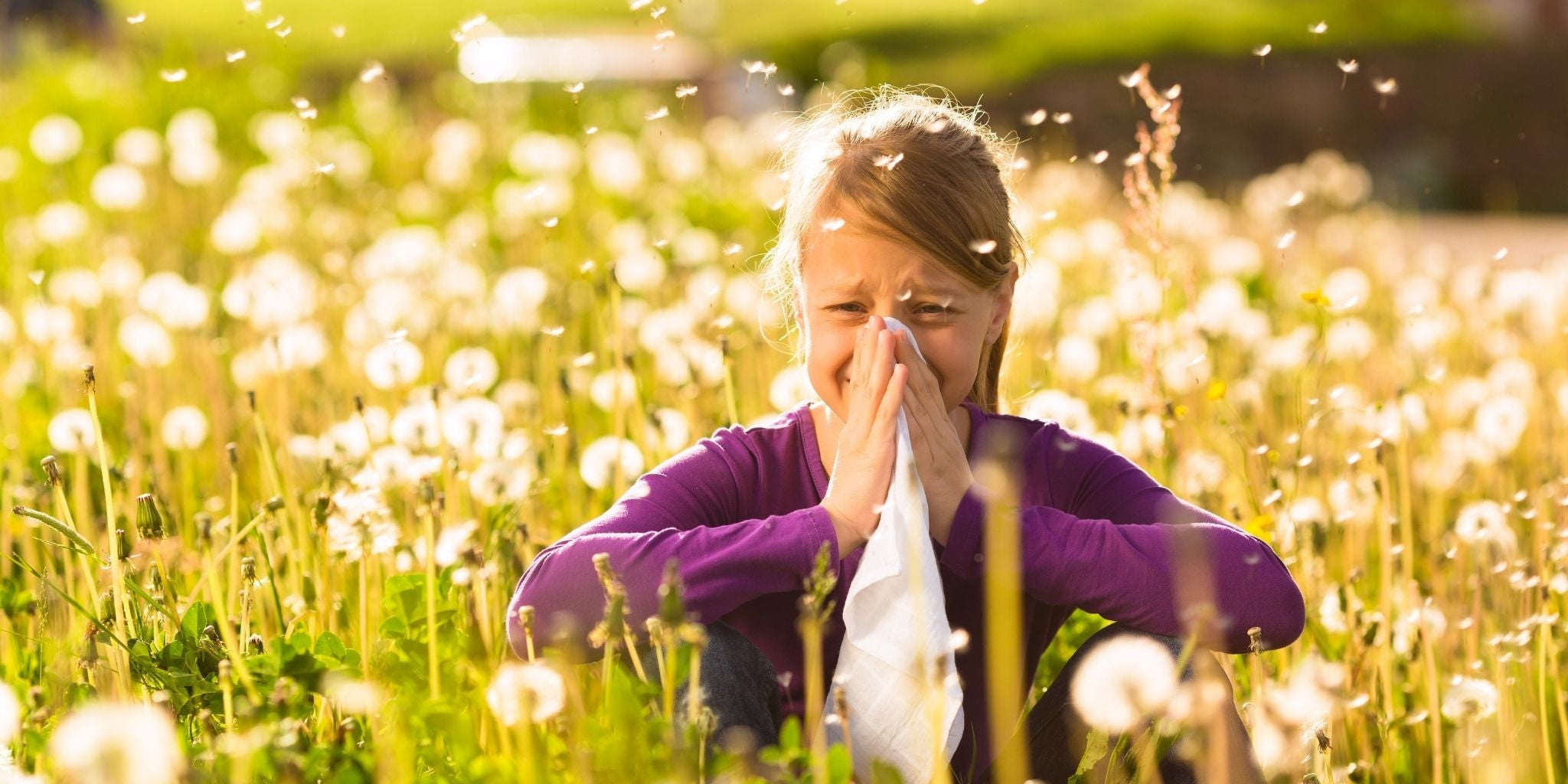 Natural Treatments for Hay Fever