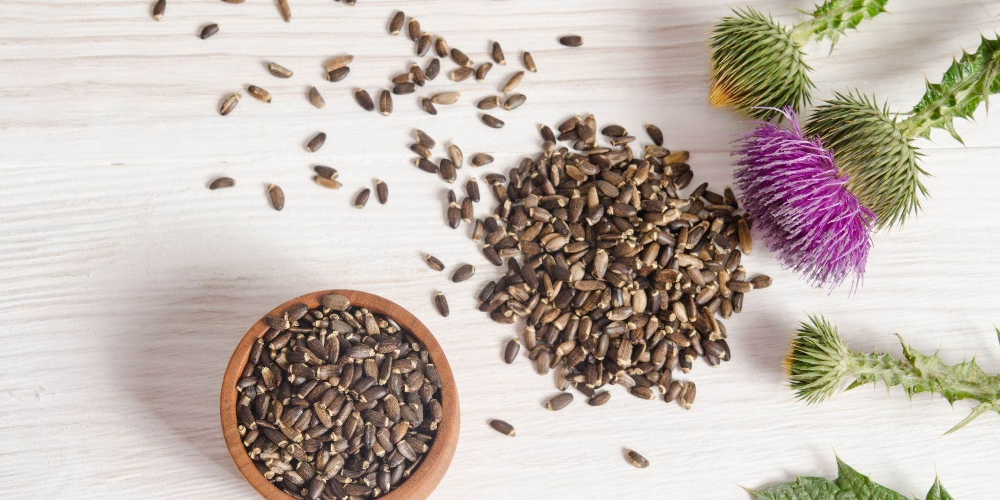 7 Reasons to add Organic Milk Thistle to your Diet