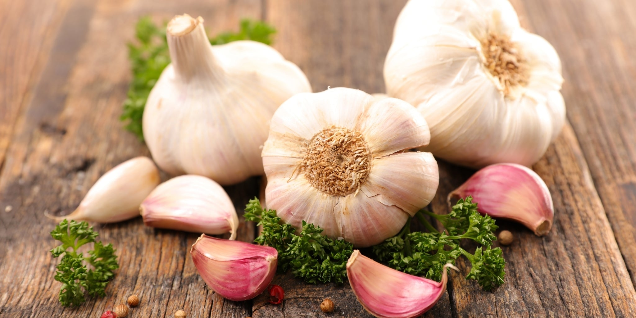 The best organic garlic supplement and it's benefits