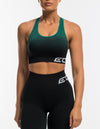Arise Ombre Sportsbra - Black/Green