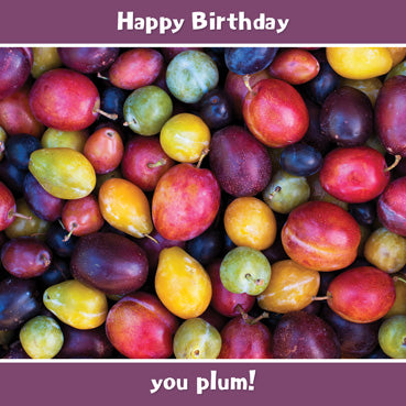 SD107 - Happy Birthday you Plum Greeting Card