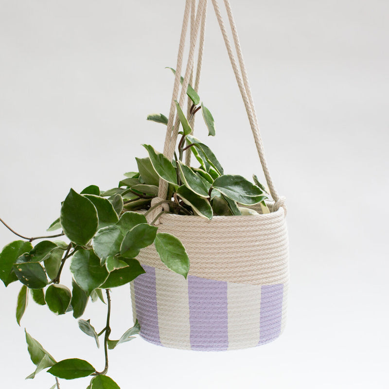 Striped Hanging Planter - Regular