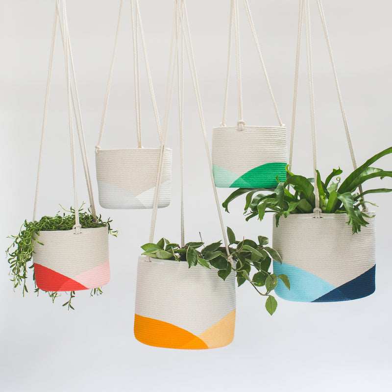 Hanging Planter - Regular