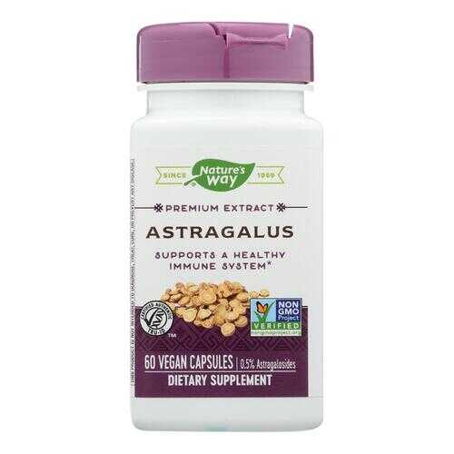 Nature's Way - Standardized Astragalus Root - 60 Vegetarian Capsules