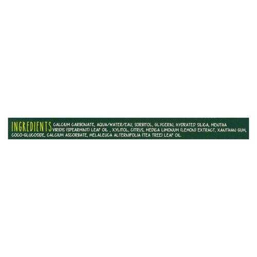 Green BeaverThe Toothpaste - Spearmint Toothpaste - Case of 1 - 2.5 fl oz.