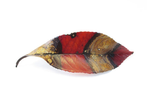 Striped Leaf card