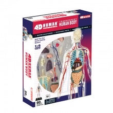 Load image into Gallery viewer, 4D Transparent Human Body Anatomy Model