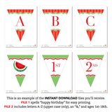 Red Watermelon Party Pennant Banner (INSTANT DOWNLOAD)