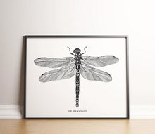 Load image into Gallery viewer, The Dragonfly
