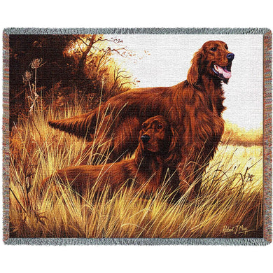Irish Setter Cotton Throw Blanket