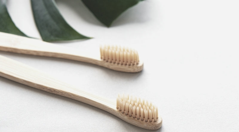 Bamboo Toothbrush - 30 way to go plastic-free - Clan Earth