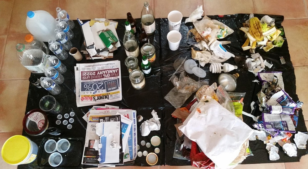 waste audit with Clan Earth -- Plastic-free in 30 steps