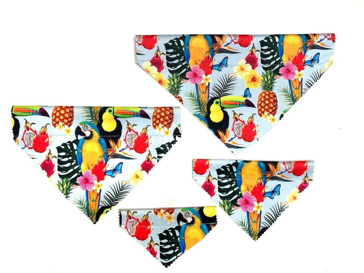 Tropical Dog Bandana - Bec Boyle