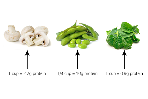 Not All Veggies are Created Equal – 10 Protein-Packed Veggies that Build Muscle