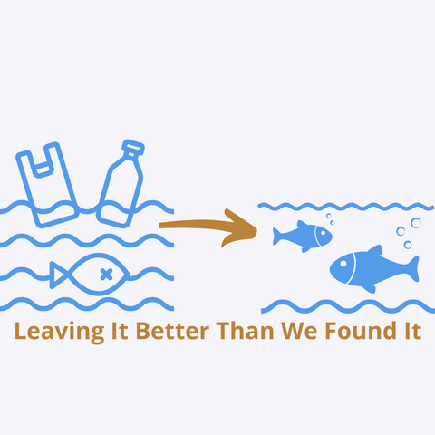 Ocean graphic with plastic bag and plastic bottle floating in it with a fish with x over it's eye.  Gold color arrow pointing at water with two healthy fish with bubbles coming from gills.  Water free of plastic.
