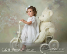 Load image into Gallery viewer, White Bishop Smocked Dress with Insets