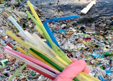 Plastic disposable straws found in the ocean