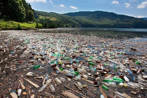 Sea pollution caused by a variety of plastic, including plastic straws