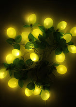 Load image into Gallery viewer, Lychee String Light (8 Meters)