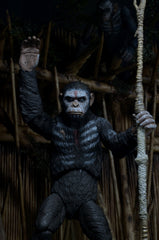 DAWN OF THE PLANET OF THE APES: Series 1 Caesar Action Figure